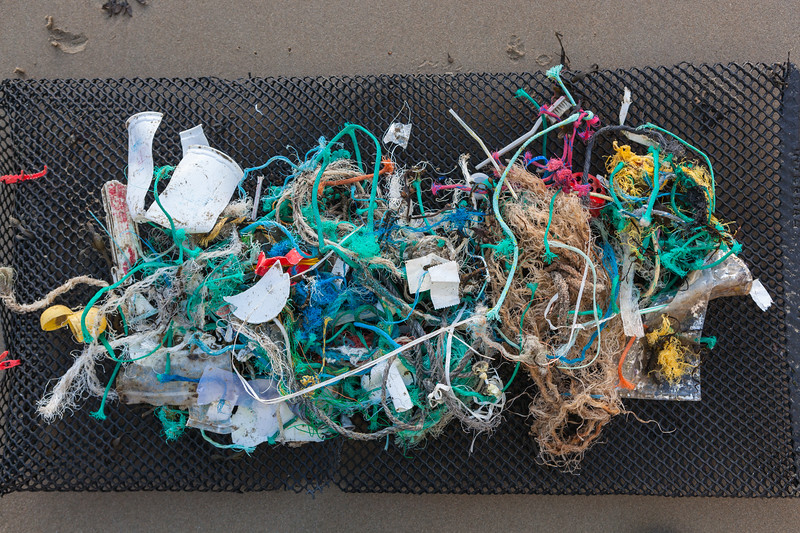 Plastic and Nylon sea shore litter collected from Petit Port on Guernsey's south coast on 20th January 2014