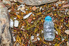 Plastic bottle and polystyrene pieces washed up at Petit Port on Guernsey's south coast on 13th February 2020