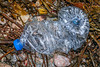 Plastic water bottle washed up at Petit Port on Guernsey's south coast on 2nd February 2020