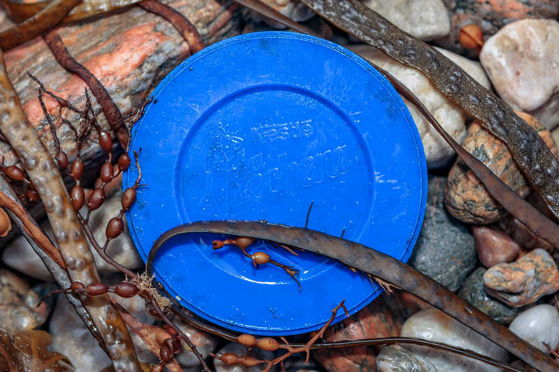 Plastic lid for Nestlé's condensed milk on the Petit Port sea shore on 24th September 2019