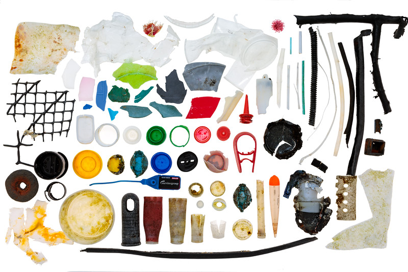78 small pieces of plastic collected from Petit Port on Guernsey's south coast on 30 January 2018