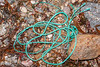 Twisted rope washed up on the Petit Port shore on Guernsey's south coast on 4th March 2020