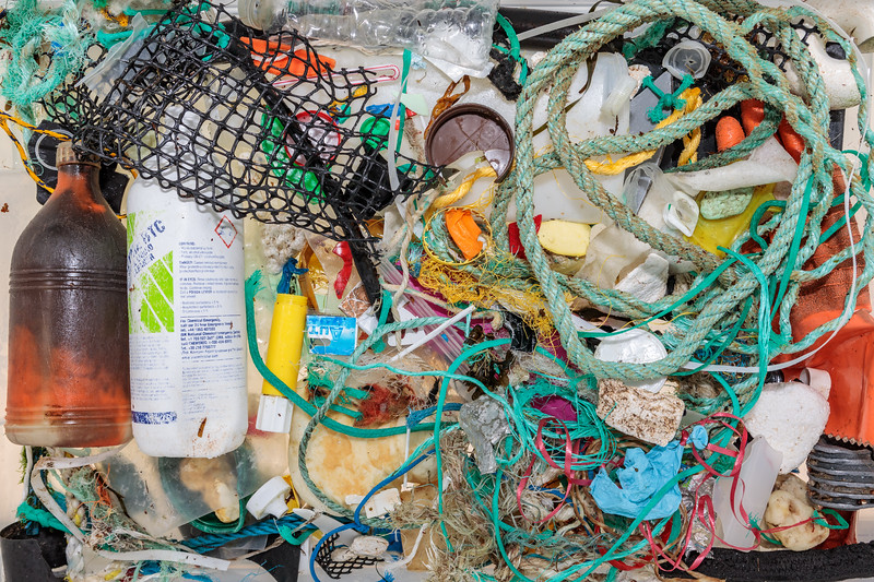Litter collected from Petit Port on Guernsey's south coast on 19 January 2018