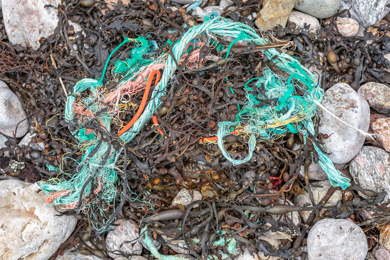 Typical mass of frayed rope and twine washed up at Petit Port on Guernsey's south coast on 6th February 2016