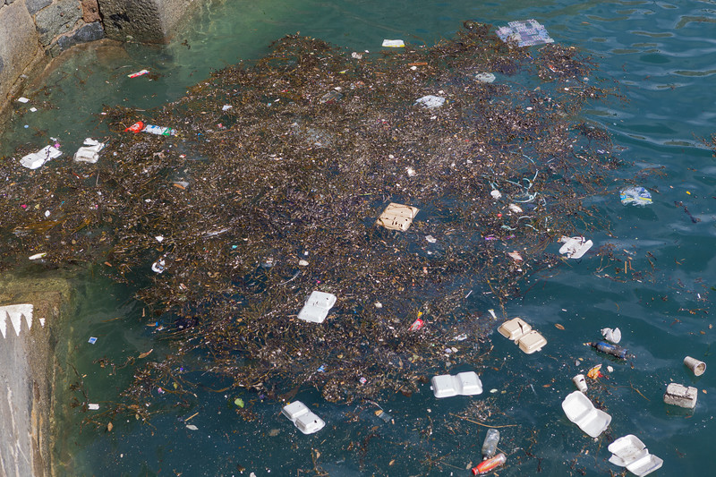 Food packaging litter blown into the Victoria Marina, St Peter Port harbour, Guernsey on 18 April 2013