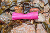 Plastic shotgun cartridge case washed up at Petit Port on Guernsey's south coast on 15th February 2020