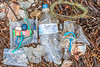 A few litter items collected from a bank of decaying seaweed at the top of the shore at Petit Port on 5th September 2020