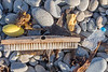 Litter found together on a beach strand line south of Fort Le Marchant on Guernsey's north coast on the 8th October 2021