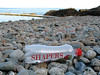 Plastic bottle left by the bathing pools at La Valette on Guernsey's east coast