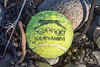 Slazenger tennis ball on a Guernsey north coast beach on the 22nd September 2021