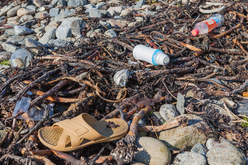 Litter in the strand line at Champ Rouget, Chouet on Guernsey's north west coast on 17th February 2013