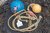 Floats, rope, and hard plastic mesh bag from the seaweed strand line at Petit Port on the 30th September 2021