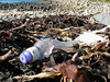 Plastic bottle litter on the sea shore at Champ Rouget, Chouet on 17 February 2008