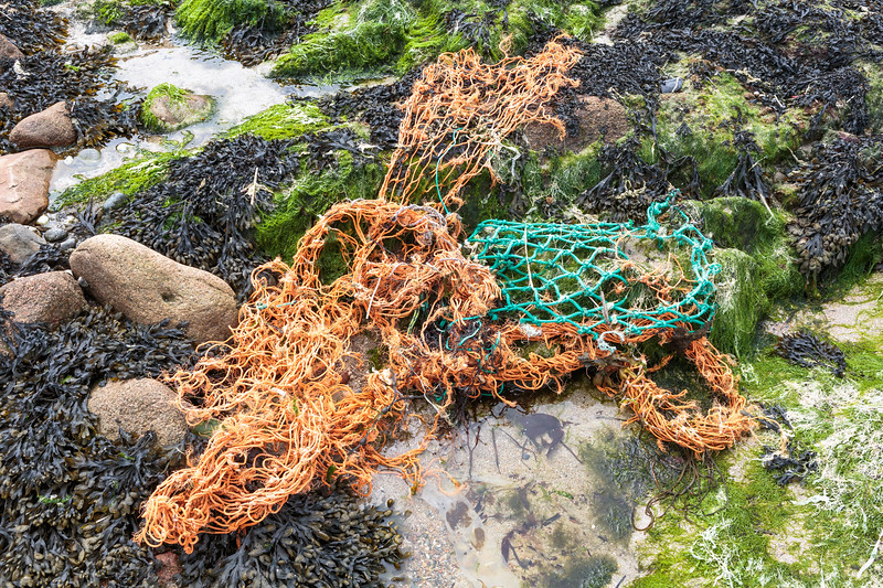 Torn and frayed fishing nets washed up at L'Estrainfer by Cobo on Guernsey's west coast on 2nd May 2016