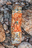 Rusty dented metal polyurethane foam spray can washed up at Petit Port on 26th February 2020