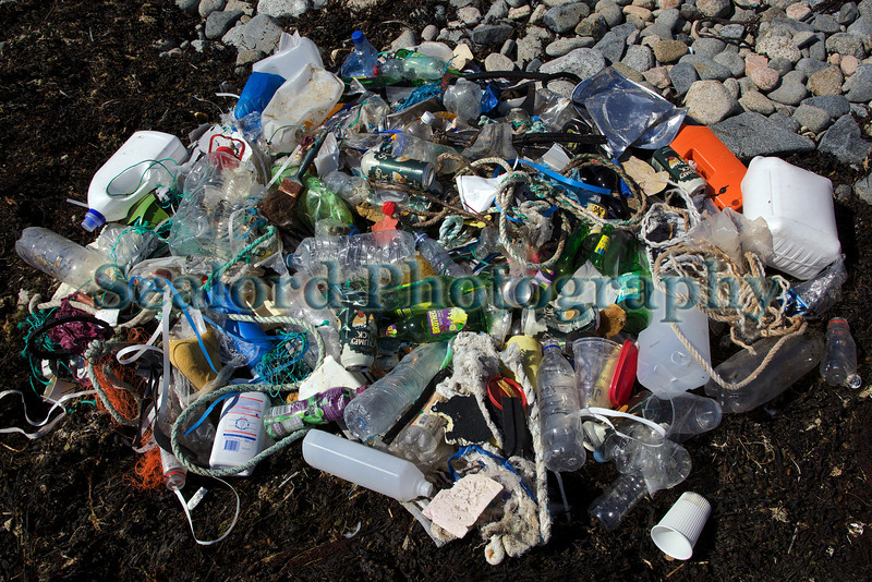 Champ Rouget Chouet beach clean 260611 ©RLLord 9312 smg