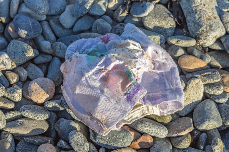 Disposable nappy on the Belle Greve Bay sea shore on Guernsey's east coast on 12th February 2021