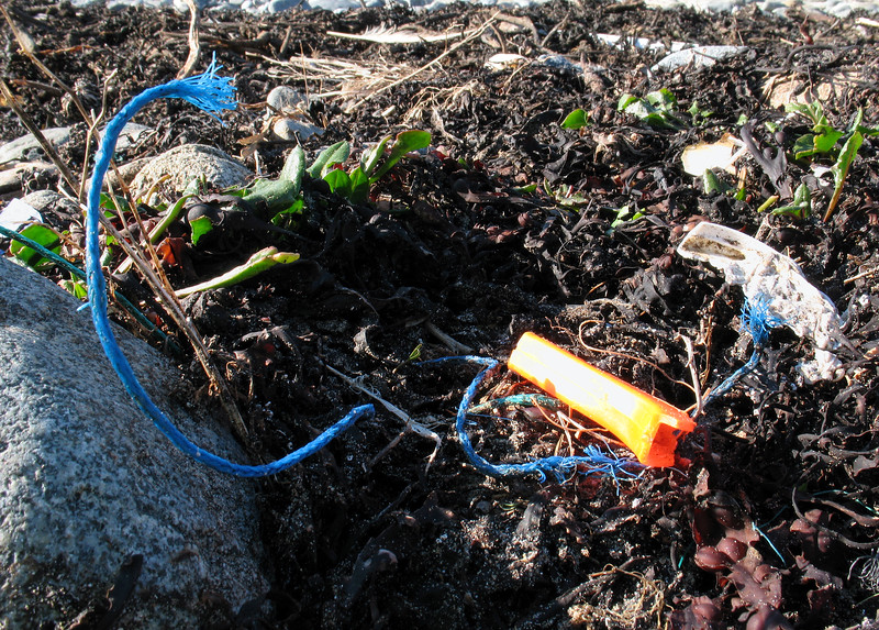 Sea shore litter at Champ Rouget, Chouet, Guernsey on 17 February 2008