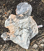 Mylar balloon collected from the Petit Port sea shore on Guernsey's south coast on the 3rd August 2021