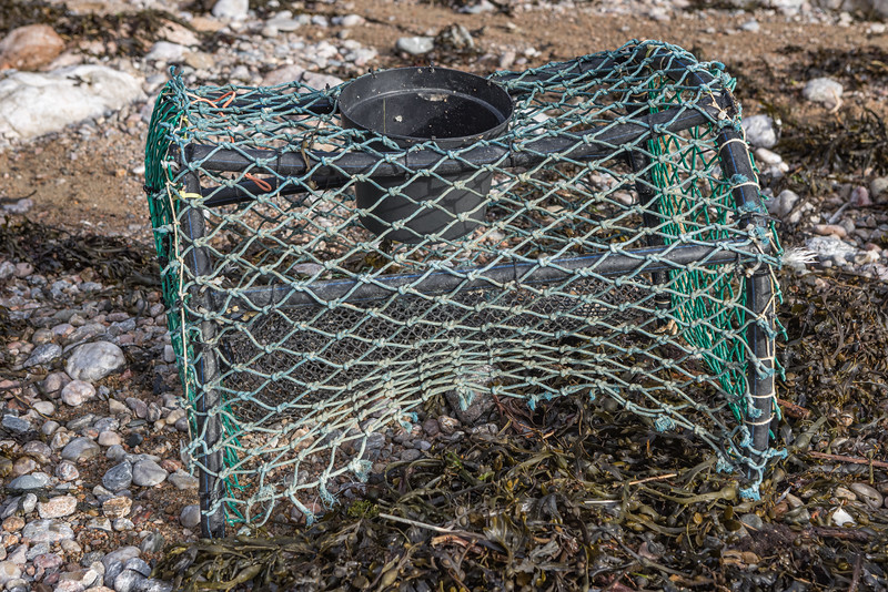 A recreational shellfish pot washed up at Petit Port on Guernsey's south coast