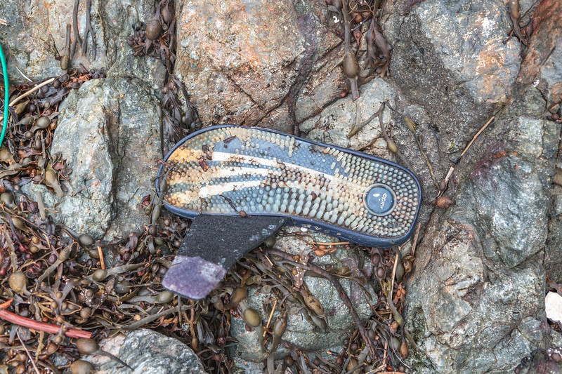 Adidas flip flop washed up at Petit Port on Guernsey's south coast on 16th January 2014