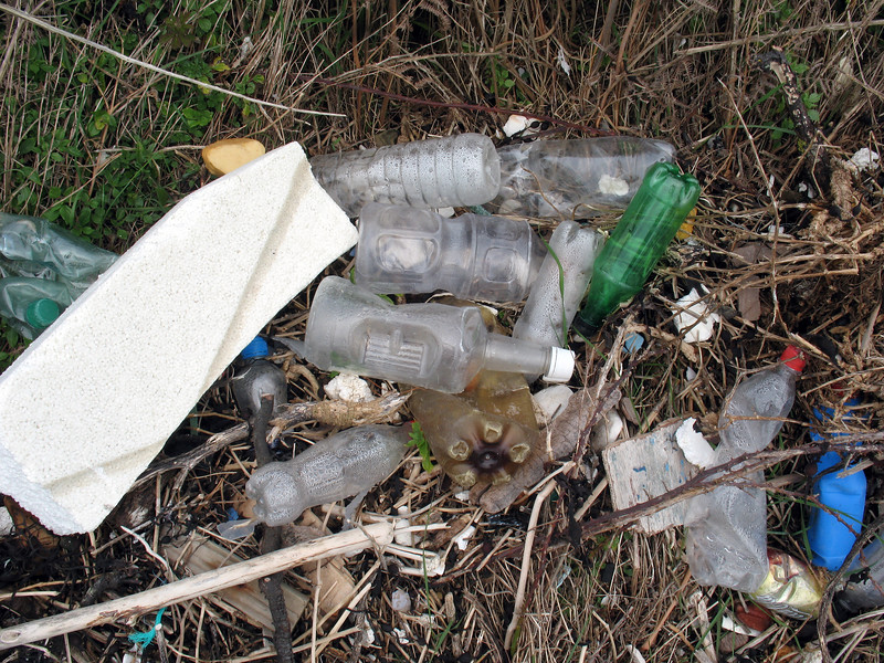 Litter found on the sea shore at Champ Rouget, Chouet on Guernsey's north west coast before collection