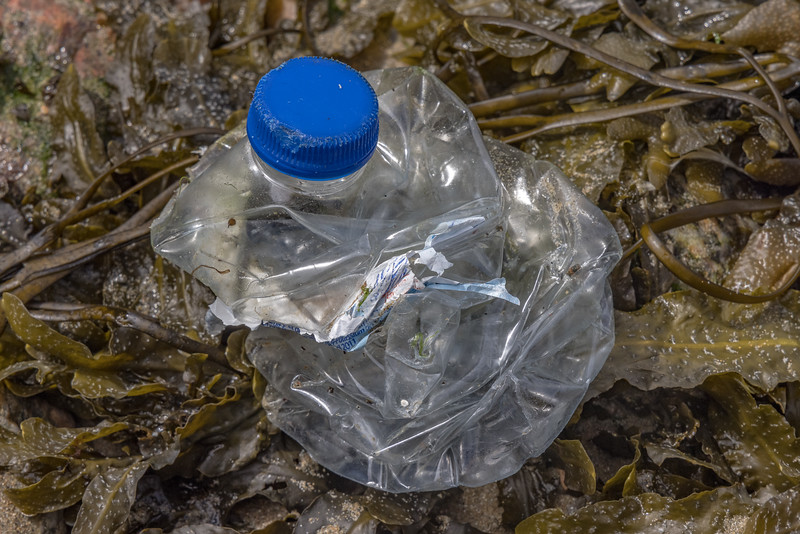 Crushed plastic water bottle from Portugal at Petit Port on Guernsey's south coast on the 26th May 2021