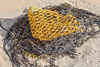 A piece of commercial fishing net washed up at Petit Port on Guernsey's south coast on 2nd November 2020