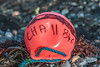 A plastic float washed up on the Belle Greve Bay sea shore on Guernsey's east coast on 5th October 2013