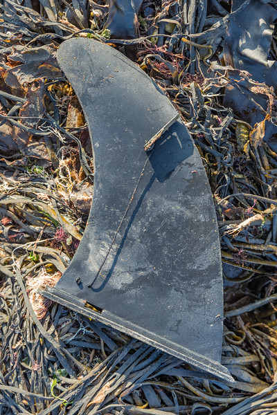 Hard plastic surfboard fin on the seaweed strand line at L'Ancresse on the 22nd September 2021