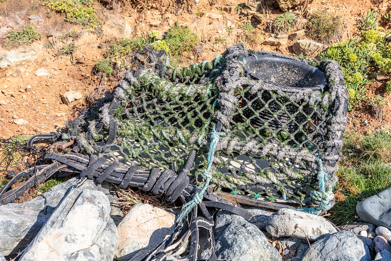 Broken parlour pot washed up at Pleinmont on Guernsey's southwest coast. Photographed on 29th August 2020