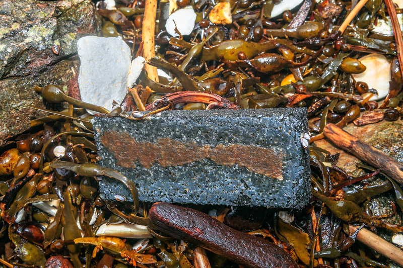 polystyrene litter and black foam piece washed up at Petit Port on Guernsey's south coast on 10th March 2020