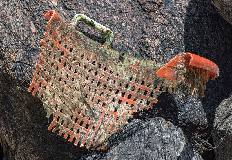 Piece of fisherman's basket in the western boulder field at Petit Port on Guernsey's south coast on the 20th May 2021
