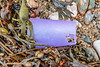 Broken plastic cup washed up at Petit Port on Guernsey's south coast on 28th November 2019
