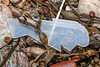 Broken piece of hard plastic washed up at Petit Port on Guernsey's south coast on 26th January 2020