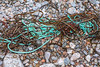 Fishing rope in the seaweed strand line at Petit Port on Guernsey's south coast on 12th December 2019