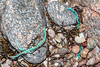 Short lengths of twisted rope washed up at Petit Port on Guernsey's south coast on 10th March 2020