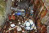 Adidas football and plastic bottles washed into a cave in the north east corner of Petit Port on 10th March 2020