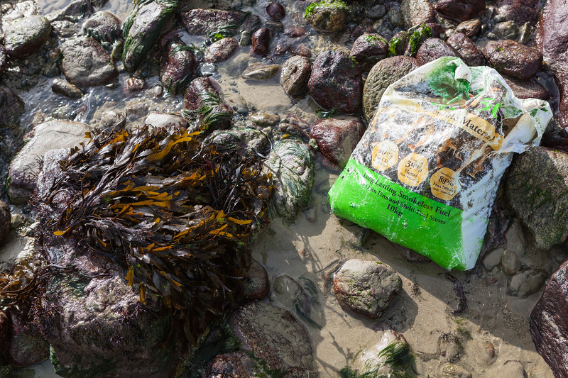 Coal plastic bag on the sea shore of Saints Bay, Guernsey