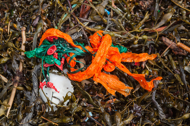 Balloons and string washed up at Petit Port on Guernsey's south coast on 16th February 2014