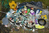 Litter collected from the sea shore at Champ Rouget, Chouet on Guernsey's north west coast on 11 June 2012