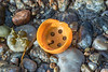 Plastic shaker cap or lid on the Petit Port sea shore on Guernsey's south coast on 16th February 2021
