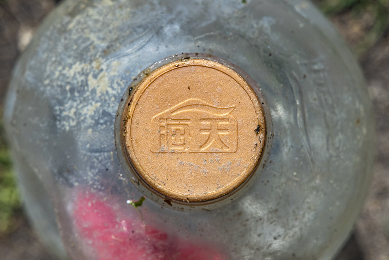 Plastic bottle with Chinese bottle top logo picked up by Pierre Ehmann at Pecqueries on the 22nd May 2021