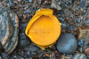 Leach's plastic bottle top on the Petit Port sea shore on Guernsey's south coast on the 21st January 2021