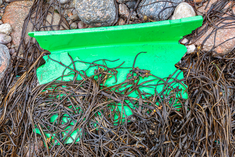 Broken fish box piece on the Petit Port sea shore on 1st October 2019