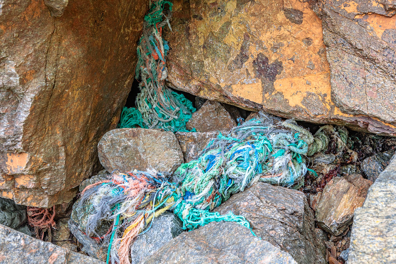 Trapped rope and twine in the western boulder field at Petit Port on Guernsey's south coast