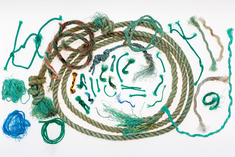 Fishing industry rope and polypropylene twine collected from Petit Port