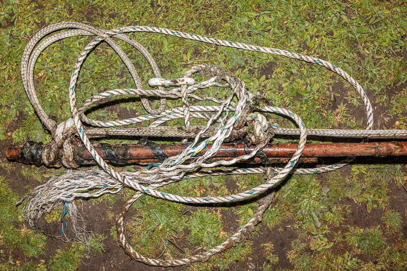 Bamboo pole and Nylon rope of a whelk fishery pot marker washed up at L'Eree on Guernsey's west coast