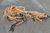 Frayed string or rope with a short length of polypropylene twine washed up at Petit Port on the 28th January 2021