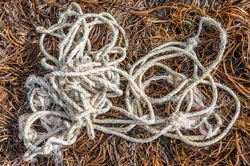 Length of frayed, twisted rope on the Petit Port sea shore on Guernsey's south coast on 26th August 2020